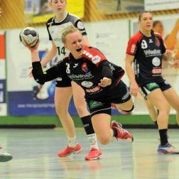 Handball und Beratung – Wie passt das zusammen?